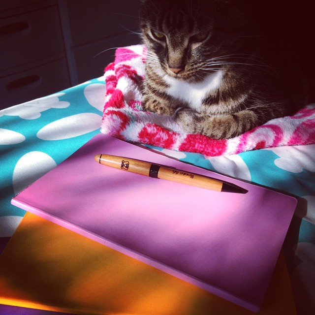 Everyone has a muse. Luna is mine. I'm also a bit old school when it comes to taking notes for my stories.