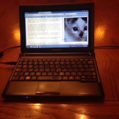 Written Kitten