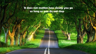 High-Resolution-Road-Trees-Wallpaper